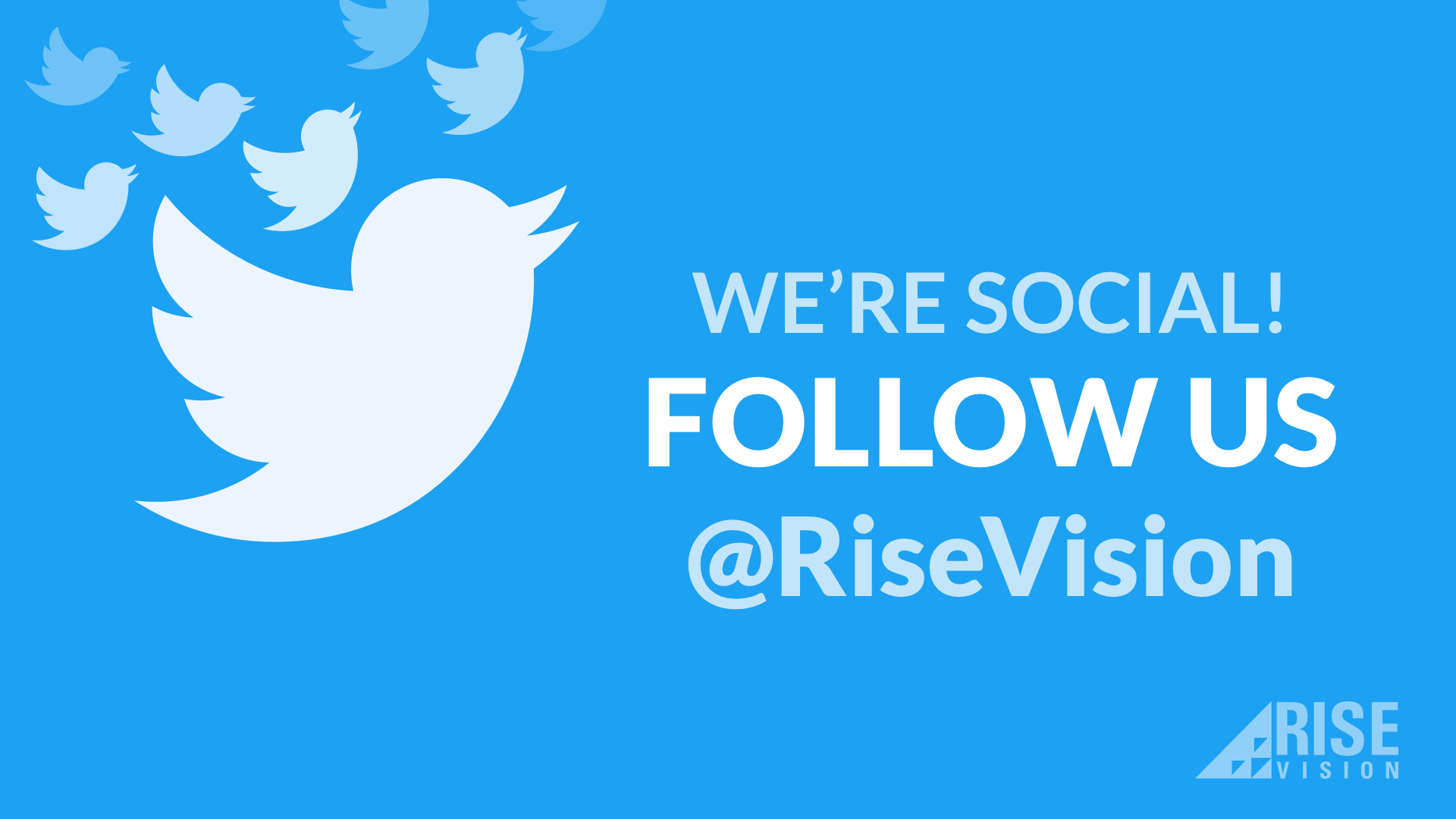 Rise Vision Twitter Template