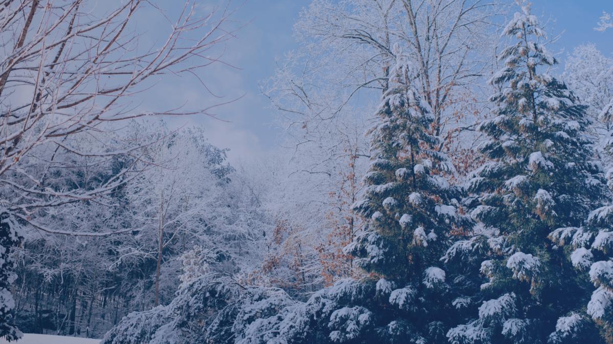 Digital Signage Winter Background Compressor