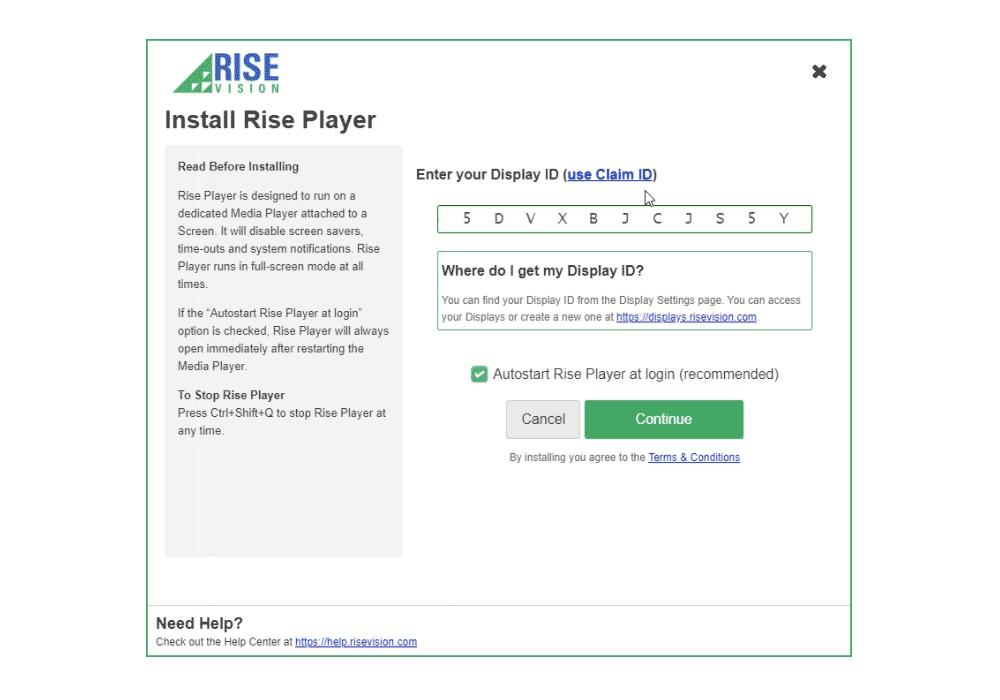enter rise vision ID