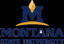 montana-state-university-logo