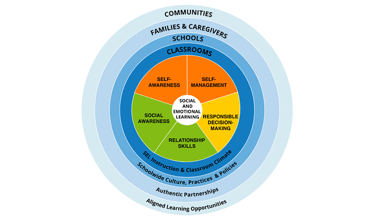 social emotional learning pie chart