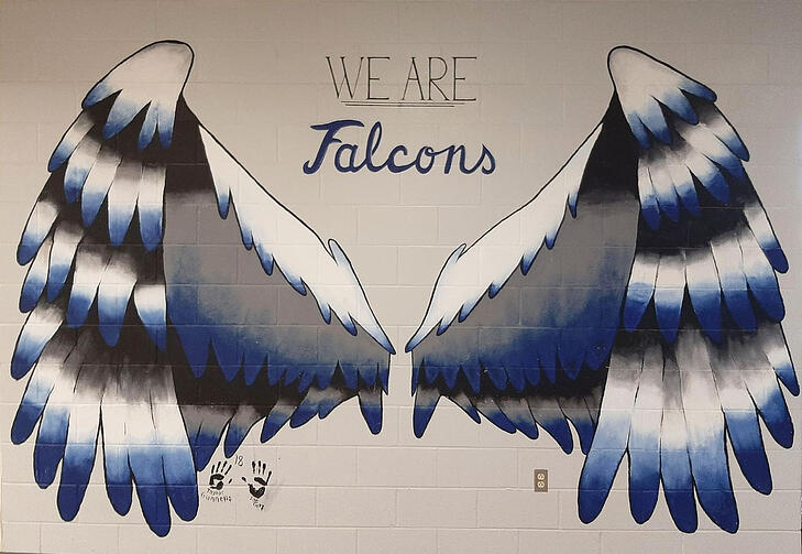 we are the falcons