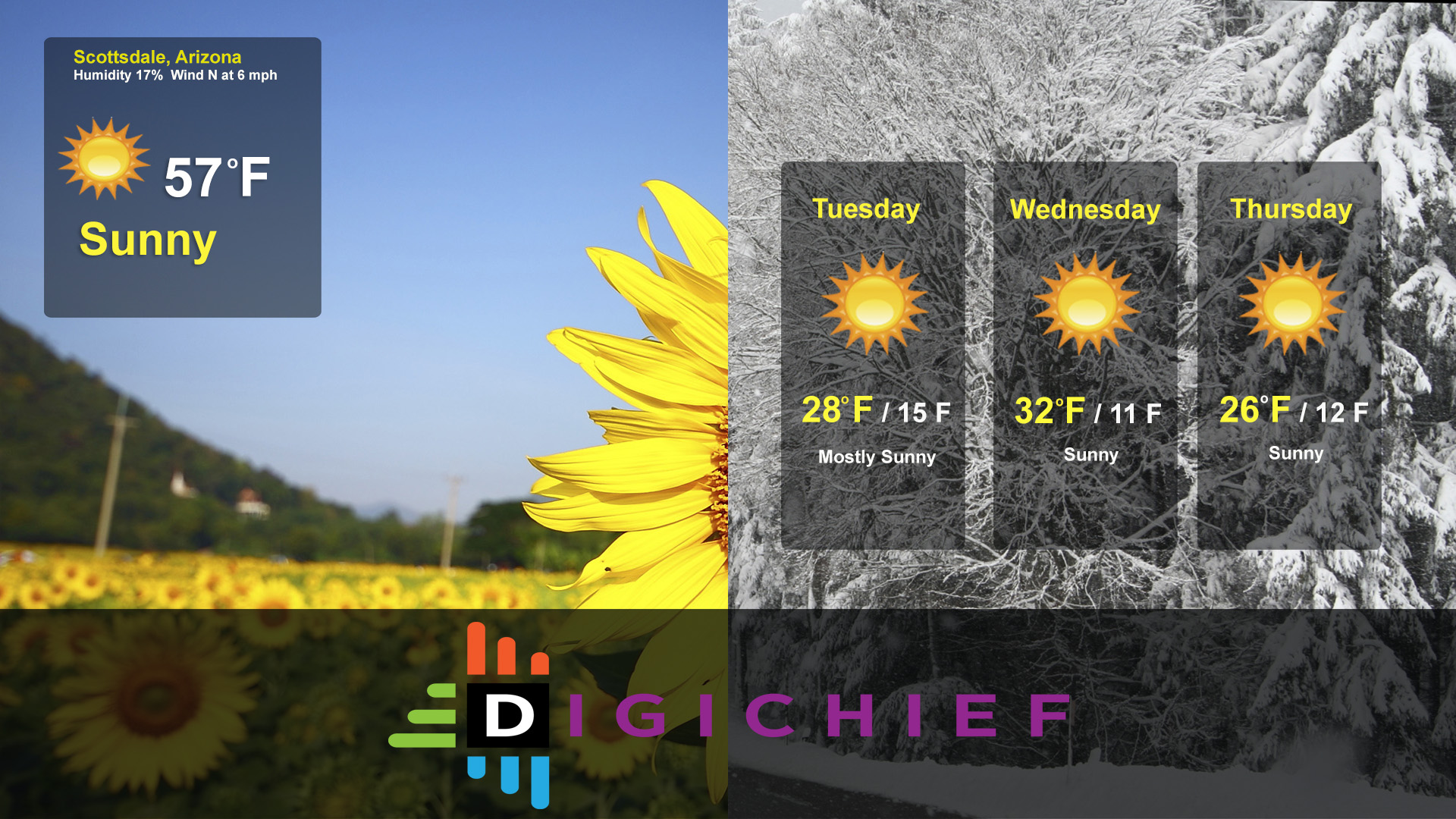 weather forecast for digital signage